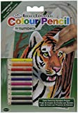 "Mini Color Pencil By Number Kit 5""X7""-Jungle Tiger"
