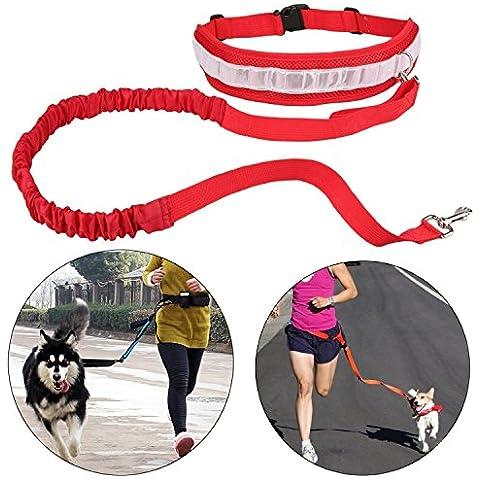 Cinghia Elastica Running dog Guinzaglio Piombo Sport Jogging Walking Collare Dell'animale Domestico Corda mano Libera vita del Cane Guinzaglio set Spedizione Gratuita (rosso)