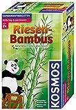 Kosmos 657406 - Riesen-Bambus