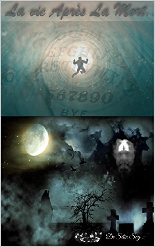 La Vie Après La Mort ... par Sélin Say.