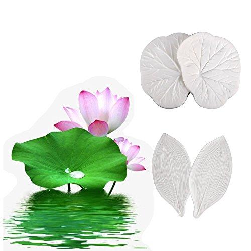 AK Art Geschirr Zucker Paste Blume Äderung Formen Blütenblatt veiners Leaf Cutter Fontant Form Kuchen Craft Tools lotus (Gumpaste Cutter Tool)