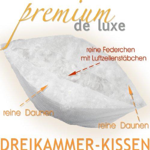 Premium de Luxe975.22.001 Daunen Dreikammerkissen (80×80 cm, Gänseflaum, 800 gr) - 3