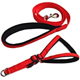 Paws for A Cause Nylon with Black Padding Dog Harness 1 Inch Red (Medium)
