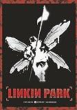 : linkin park hybrid theory POSTERFLAGGE (Haushaltswaren)