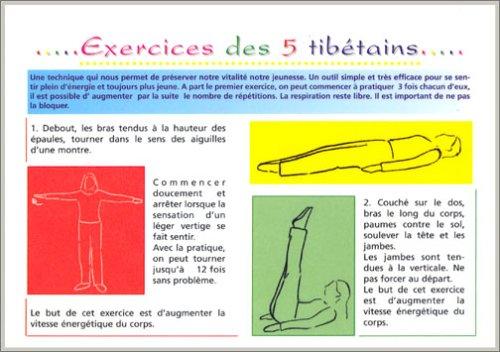 Exercices des 5 tibétains : Planche