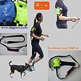 3rd Hand guinzaglio (TM)–-mani libere guinzaglio del cane, sport Pet guinzaglio guinzaglio, vivavoce, fascia da braccio per iPod Nano/shuffle, ARM, misure: 9