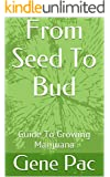 From Seed To Bud: Guide To Growing Marijuana