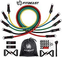 FitBeast Conjunto de Bandas de Resistencia, 100 LB Bandas de Entrenamiento de Estiramiento físico con 5 Tubos de...