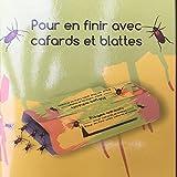 Pièges pour Cafards et Blattes - Lot de 10 pièges adhésifs discrets sans odeurs