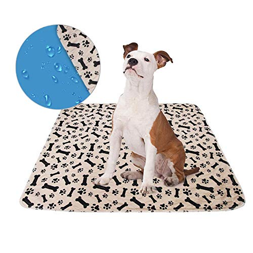 Nail Food System (PuppyPeePads   Dog Pee Pads   Leakproof Puppy Training Pads   Reusable & Super Absorbent   Non-Slip Puppy Piddle Pads   5 Color & S M L   for Incontinence, Whelping, Potty, and Crate Use, Pale & S)