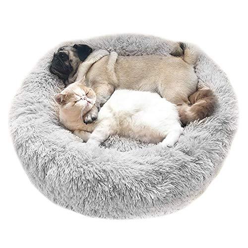 Cozywind Cama para Perros y Gatos