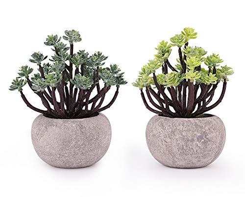 Dedoot Künstliche Pflanze, 2 Stück, Mini Dekorative Kunstpflanze Topfpflanzen Kunstpflanze Sukkulenten Pflanzen in Töpfen für Heimdekoration Indoor Outdoor Büro