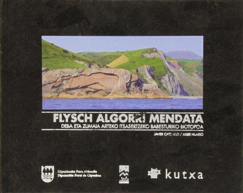 Flysch Algorri Mendata
