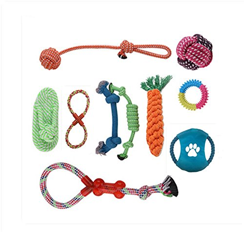 ANPI Multiple Opción Juguetes para Perros, 100% Seguro Duradero Sin Tóxica Perro Interactivo Juguetes para Masticar,Juego de 10 piezas Regalo Para Mascotas Perros