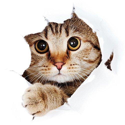 Apple iPhone 4 Housse Étui Silicone Coque Protection Chat Chat Kitten Étui en cuir gris