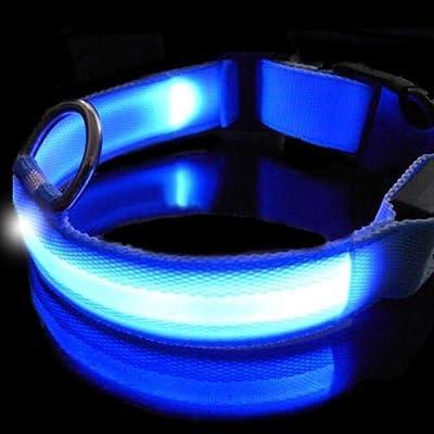 Blau LED-Haustier-Halsband Nacht, Sicherheit Hund blinkendes Halsband.