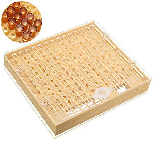 ulofpc Professionelle Bienenzucht Werkzeuge Kunststoff Bee King Inkubator Bienenstock Kit Kreative Yuwang Box Set Imkerei Zubehör -