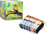 Pack de 6 avec Grise (1 DE Chaque Couleur) Cartouches d'encre Canon CLI-521 PGI-520...