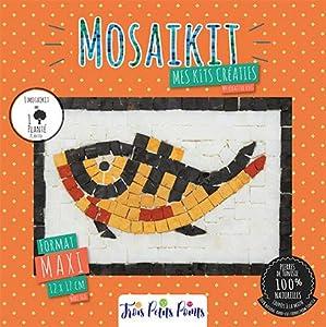 Trois petits points Kit de Mosaico Completo de Tres Puntos, Modelo Fish-Maxi, 6192459600192, Universal