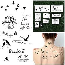Amazon Fr Tatouage Oiseaux
