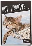Exacompta Forum Funny Pets 1844512E - Agenda journalier broché - Août 2018 à Juillet 2019 - couverture en carte imprimée avec un pelliculage brillant toilé -  12 x 17 cm  visuel chat