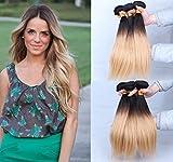Extensions für komplette Haarverlängerung zum Einnähen oder Kleben - hochwertiges Remy Echthaar Haarverlängerung - 100 g - 35.6 cm, Dip Dye, seidige gerade Ombre Hair Extensions, Farbe:Natürliche schwarze Blond #1b/27