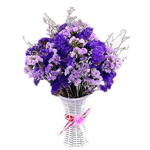 Vraiment bouquet bouquet de vent naturel fleurs séchées plein d
