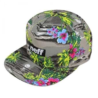Neff Snapback neue Kollektion alle Modelle, Farbe:Five O Cap Grey