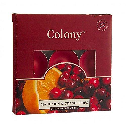 Mandarin & Cranberries Box Of 9 Tealights by Wax Lyrical -