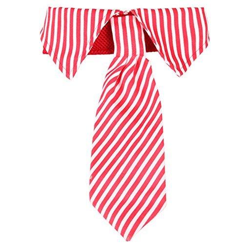 BUYITNOW Sofortkauf-Hund Krawatte Halsband Verstellbar Streifen Hals Krawatte für Mittlere Große Hunde, S, Rot
