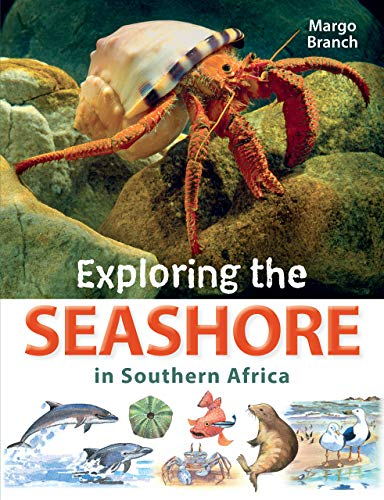 Exploring the Seashore in Southern Africa