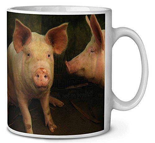 Schweine im Schweinestall Kaffeetasse Geburtstag / Weihnachtsgeschenk