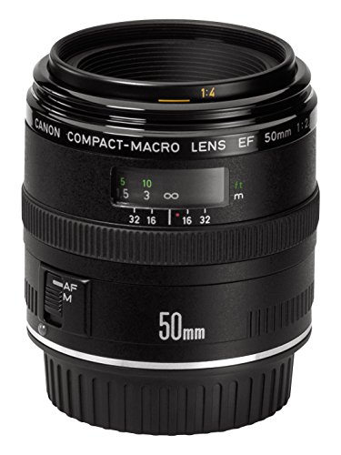 Canon EF 50mm f/2.5 Macro Lens Reviews