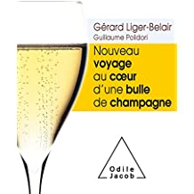Nouveau voyage au c ur d'une bulle de champagne