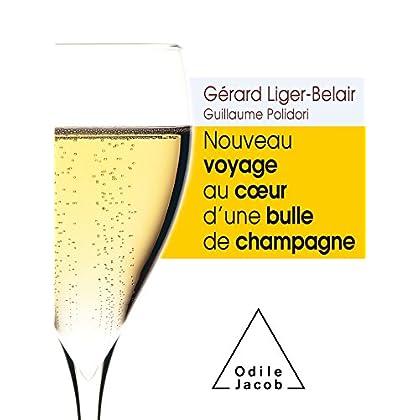 Nouveau voyage au coe ur d'une bulle de champagne