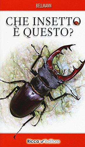 Che insetto è questo? Ediz. illustrata