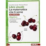 Libro visuale la matematica che ti serve. Algebra-Geometria 3. Con e-book. Con espansione online. Per le Scuole superiori