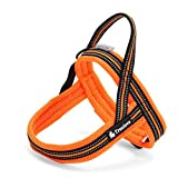 Rantow 3M Night Safety Reflektierendes Hundegeschirre Kein Zug Einstellbare Hundeweste Harness Soft Mesh Katzengeschirre für Large / Medium / Small Hunde, Orange (L (63-82cm))