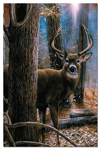 Tree-Free Greetings 66520 12-Count Woodland Sentry Buck Notecard Set