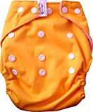 #4: Bottom Genius Re usable Pocket cloth diaper cover with 100% cotton highly absorbing 6 layer Insert