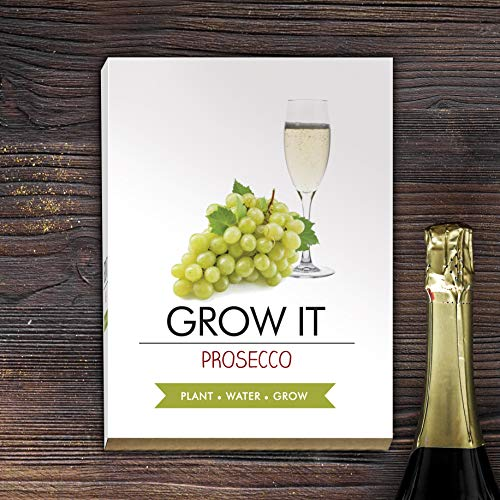 Cadeau Republic Grow It Prosecco