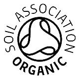 Premier Seeds Direct 40 g Organic Sprouting Radish China Rose Seeds