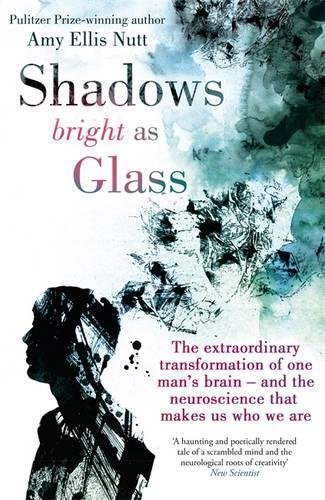 Shadows Bright As Glass: The Extraordinary Transformation of One Man's Brain - and the Neuroscience that Makes Us Who We Are