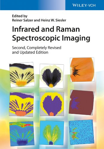 Infrared and Raman Spectroscopic Imaging (English Edition)