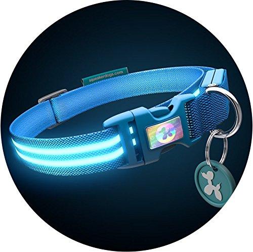 """Poochlight Authentic Squeaker LED Hundehalsband-USB wiederaufladbar-in 8Farben & 4Größen-Macht ihren Hund sichtbar, Safe & in Sicht, Small 33-45cm (13-17""""), Electric Blue"""