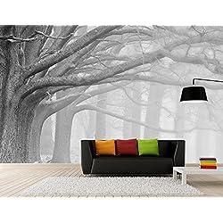 Papel Pintado 3D En Blanco Y Negro De Árboles Forestales . 400Cmx280Cm