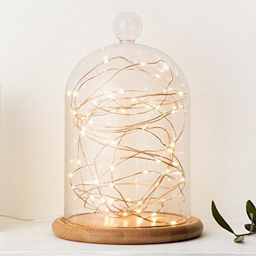 guirlande-lumineuse-a-piles-avec-50-micro-led-blanc-chaud-sur-cable-en-cuivre-par-lights4fun