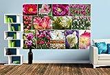 Premium Foto-Tapete Tulpen Collage (verschiedene Größen) (Size M | 279 x 186 cm) Design-Tapete, Vlies-Tapete, Wand-Tapete, Wand-Dekoration, Photo-Tapete, Markenqualität von ERFURT