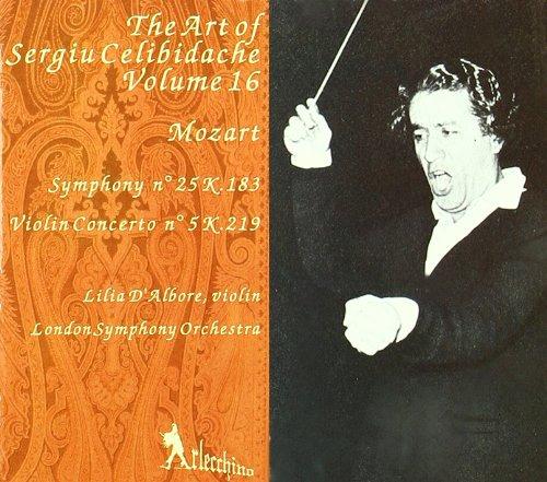 symphony-25-concerto-violin-5