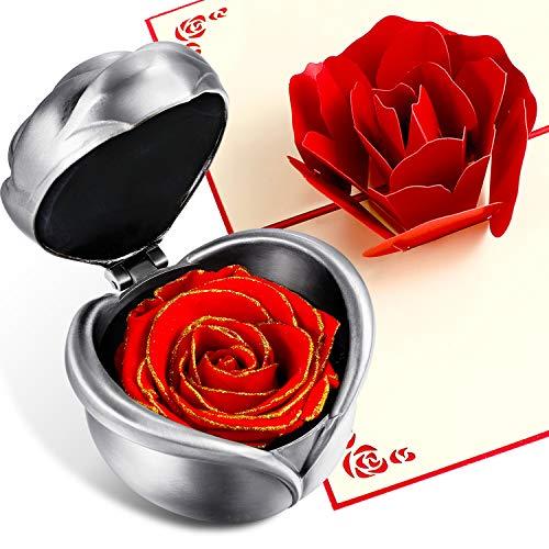 Chengu Konservierte Blume Rose Forever Rose Never Withered Eternal Rose mit Geschenkbox und 3D Pop Up Rose Grußkarte für Valentinstag, Jahrestag, Geburtstag, Muttertag Gilding Red with Silver